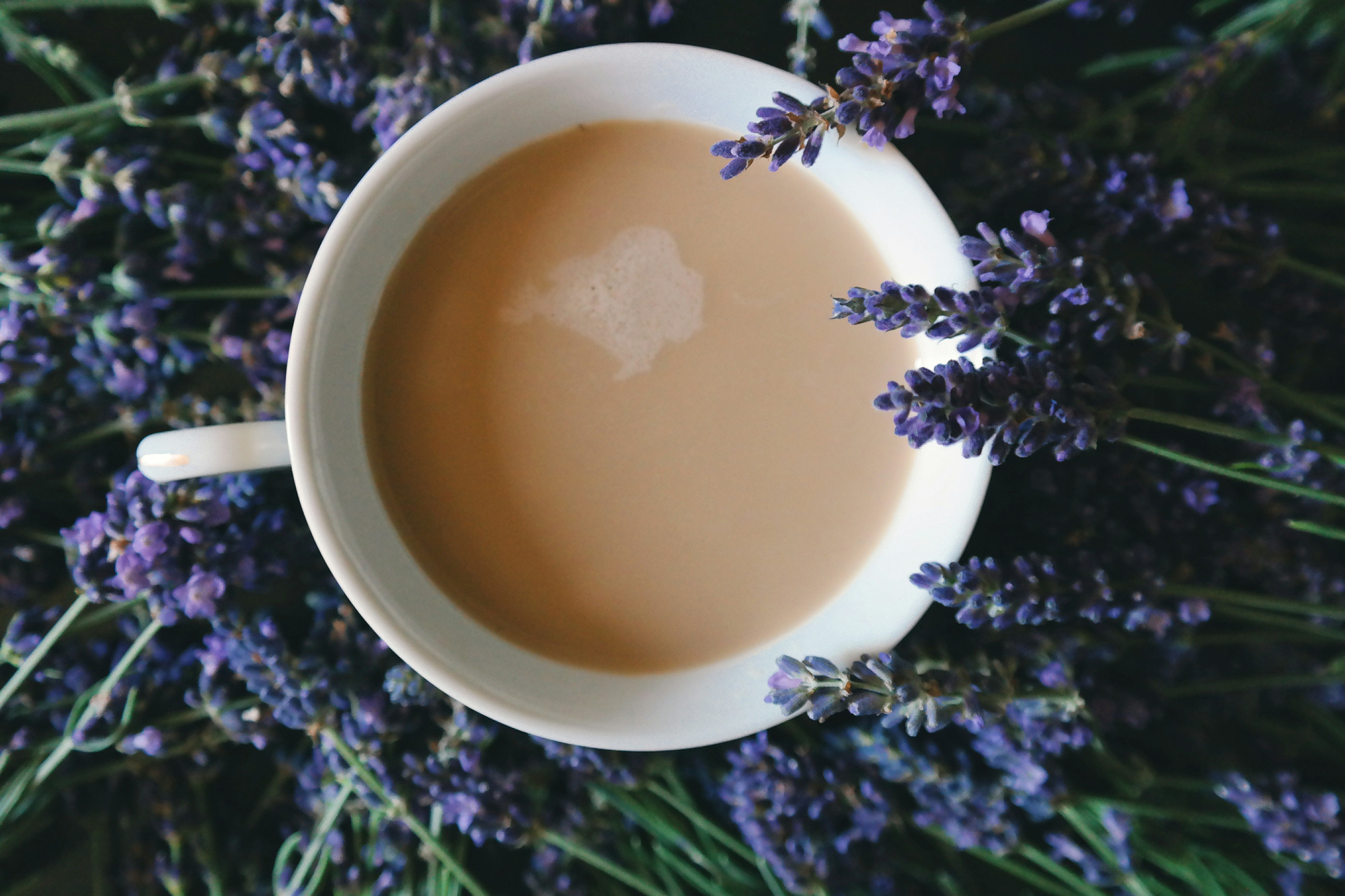 coffee and lavender | Unfiltered Coffee - Bartow, FL - An Exchange of Goods, Love & Memories